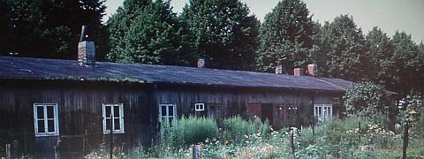 Waldbaracke in der Horst