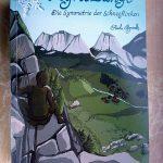 Das Buch-Cover, Gebirgslandschaft mit im Fels hockender Figur.