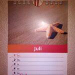 Kalenderblatt mit Bild von Seestern am Strand.